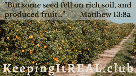 """""""But some seed fell on rich soil, and produced fruit..."""" Matthew 13:8a"""